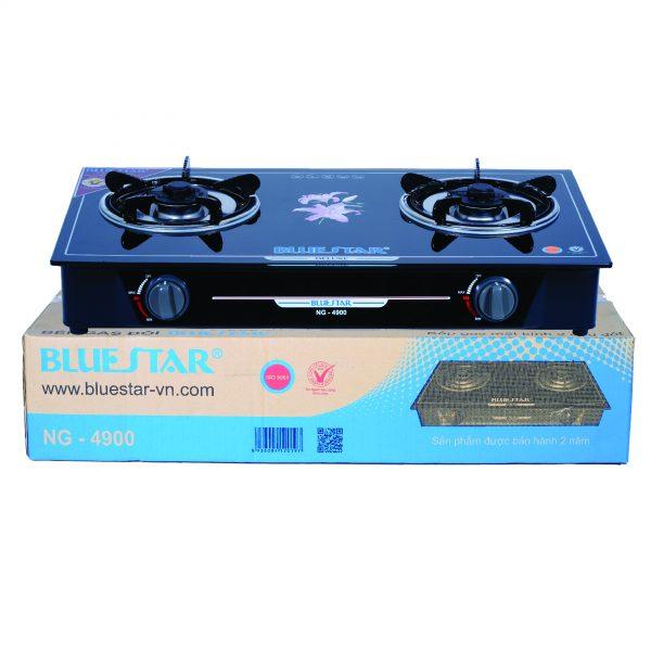 Bếp BlueStar NG-4900 chính hãng